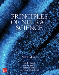 Principles of Neural Science, 6th Edition